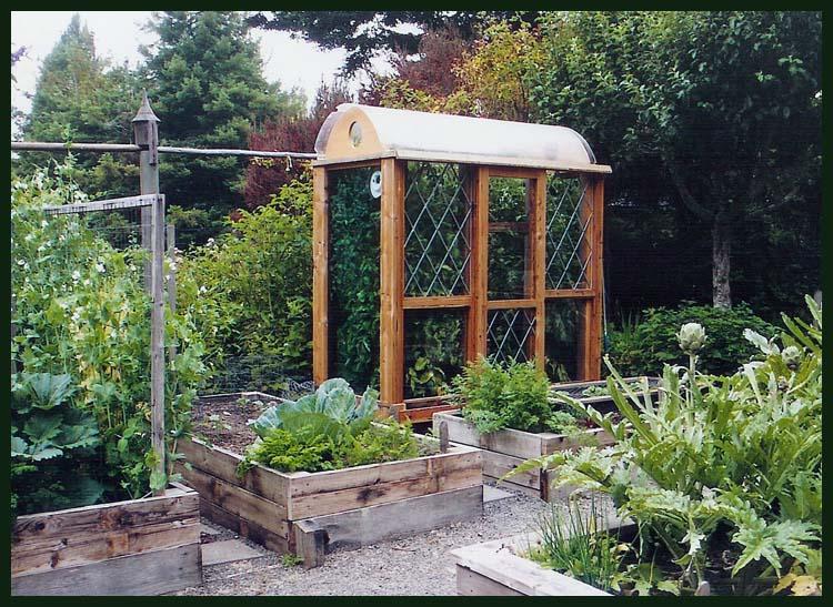 The Tomato Terrarium