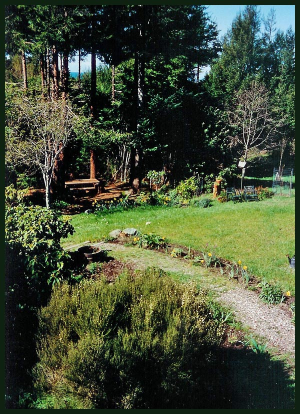 The Picnic Grove circa 1996